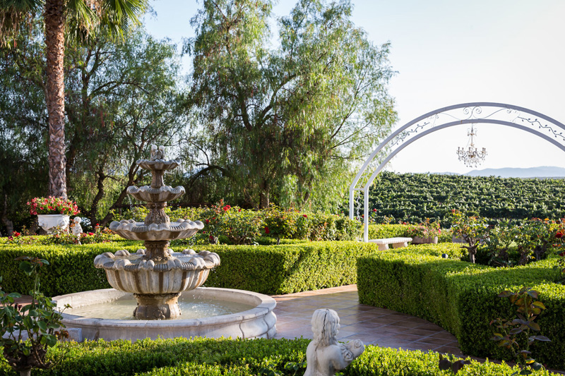 Best outdoor vineyard wedding venue in temecula southen california amenenties junglespirit Choice Image